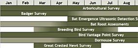 Surveys and Monitoring